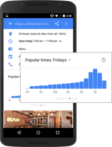 Google Business Popular Times
